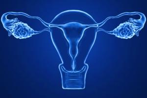 ¿Por qué crear un ovario artificial?