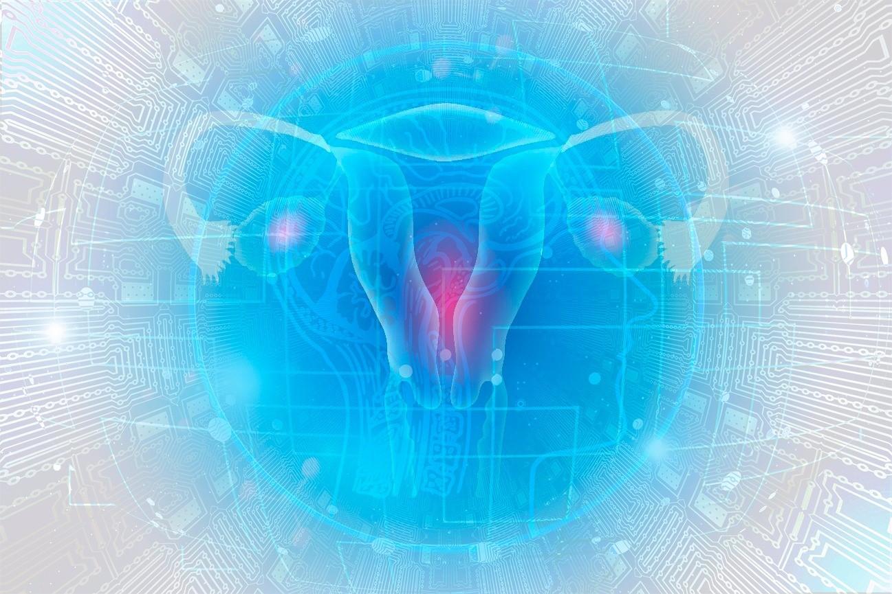 Inteligencia Artificial y Transcriptómica para el Estudio del Endometrio
